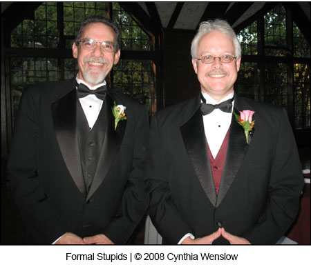 Formal Stupids by Cynthia Wenslow